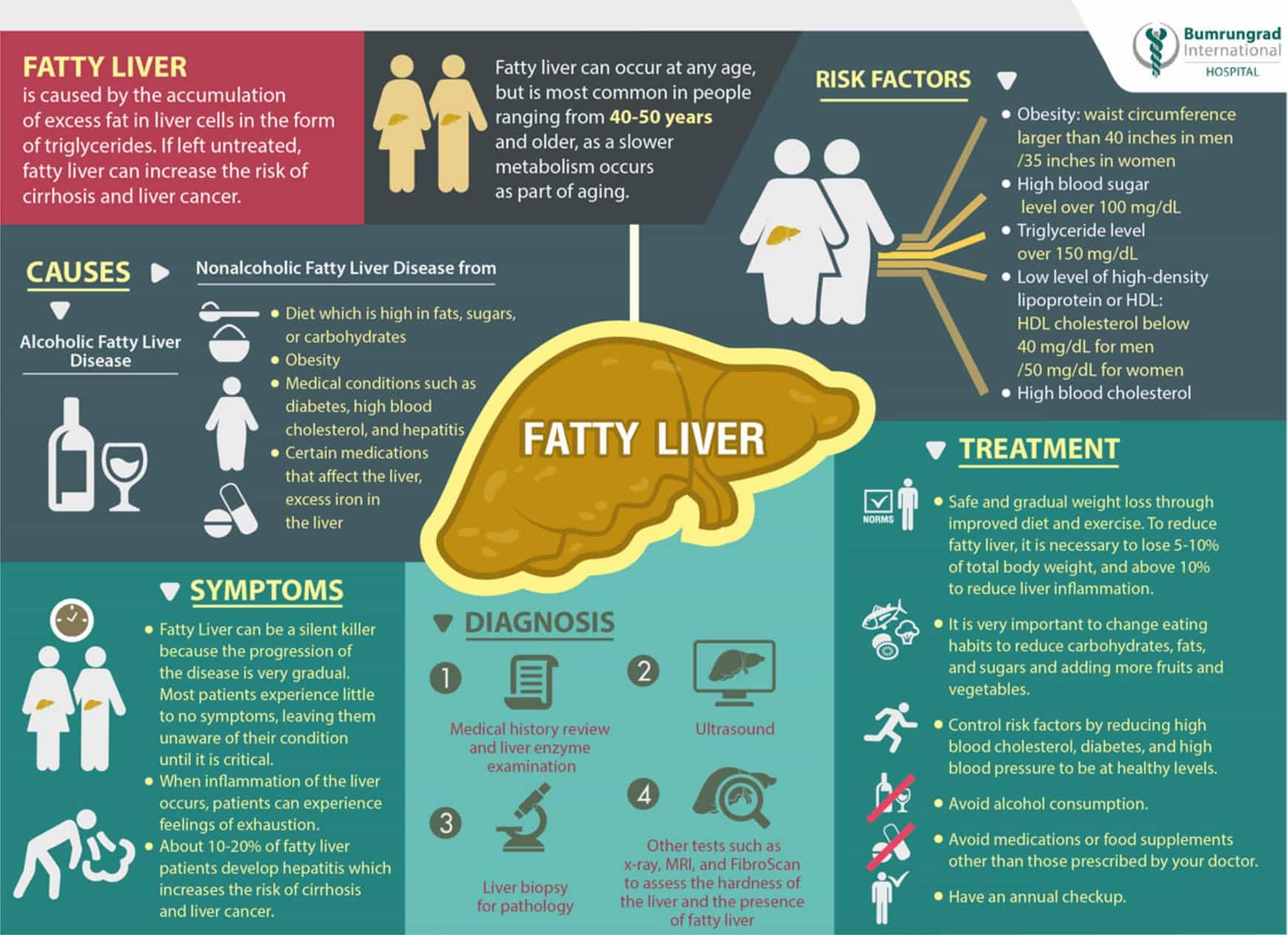 liver enzymes elevated Tail Mots-clés - liver enzymes elevat